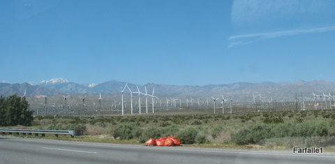 huge-windfarm2