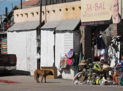 los-algodones-dog-and-shop-2-27-2009-22-00-44