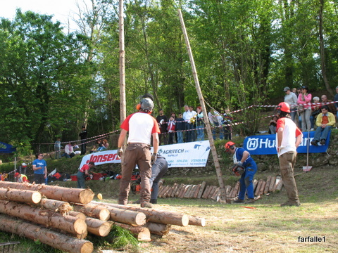chain-saw-comp-timber