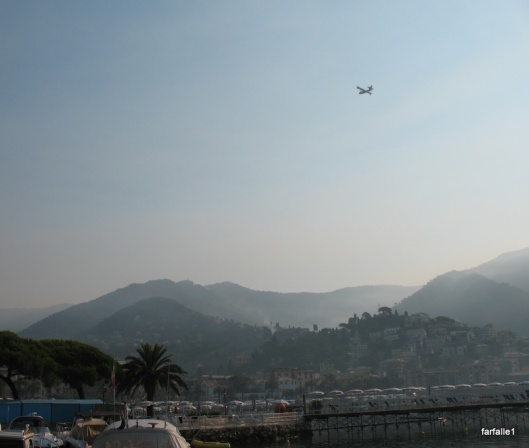 Canadair in smoky Rapallo