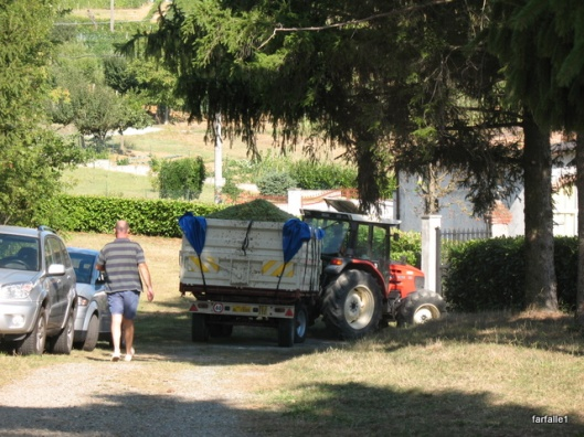 tractor (12)