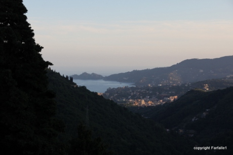 last light on Rapallo-002
