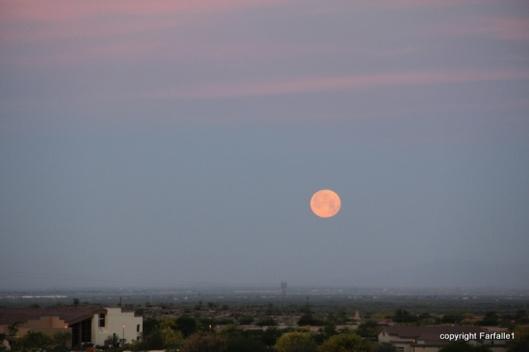moon setting over Phoenix
