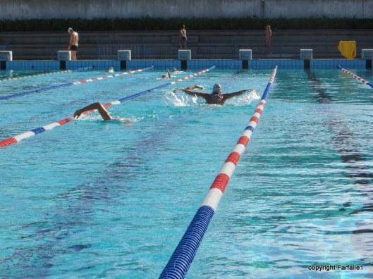Swimming warm-up laps