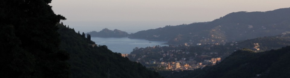 An Expatriate in Rapallo