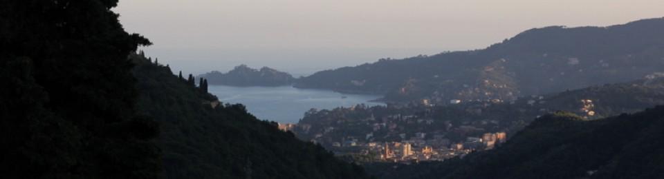 An Expatriate in Rapallo