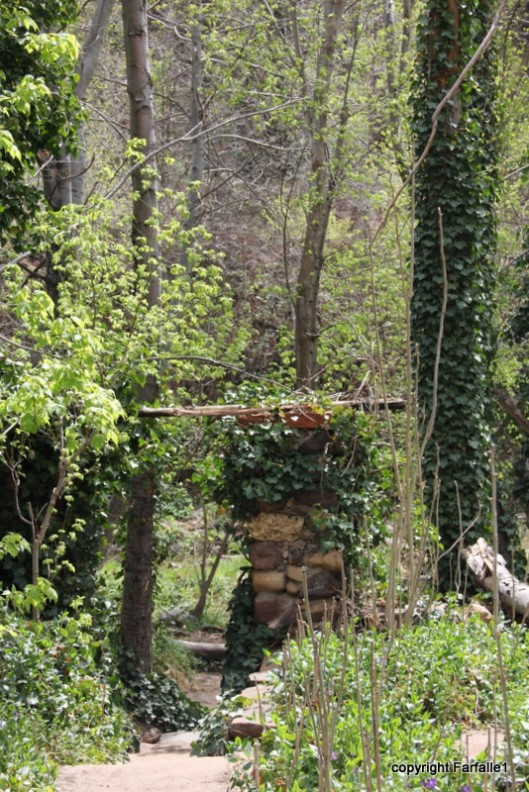hike with Elly, Fritz, Jim Oak Canyon Mayhew Lodge-001