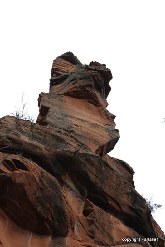 v ostrich rock