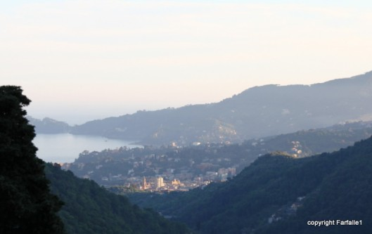 Rapallo at sunset
