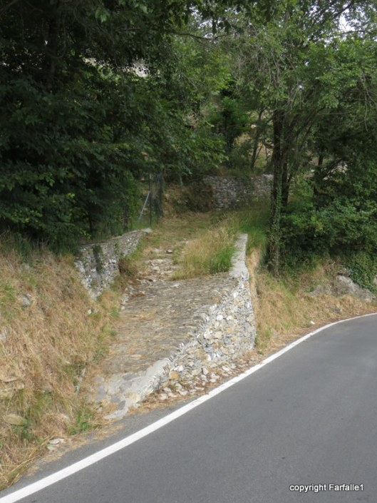 the start of the path