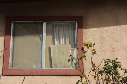 Superior House Tour broken window
