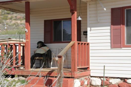 Superior House Tour monkey resident
