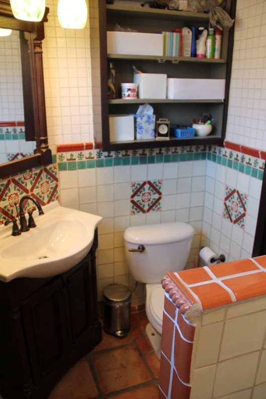 Superior House Tour varied decade house bathroom